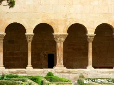 Yacimiento Clunia Sulpicia - Desfiladero de Yecla - Monasterio Santo Domingo de Silos - Actividad cu